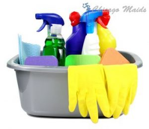 Request Maid in Groveland Park